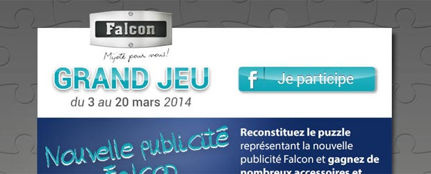 Falconfrance.com - Jeu facebook Falcon France