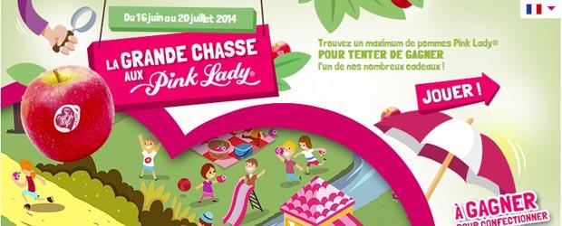 Pinkladyeurope.com - Jeu facebook Pink Lady Europe