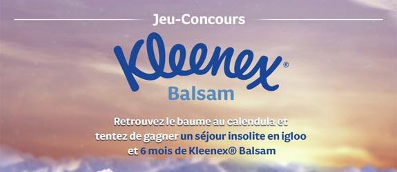 Kleenex.fr - Jeu facebook Kleenex France