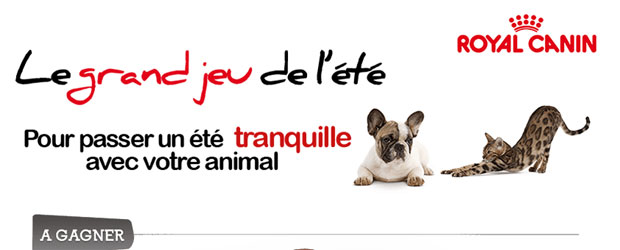 Jeu facebook Royal Canin
